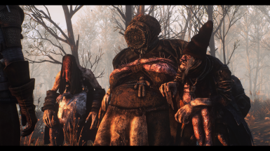 the witches of the  crookback bog