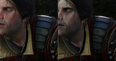 the witchers v5