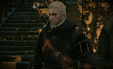HOT Witcher