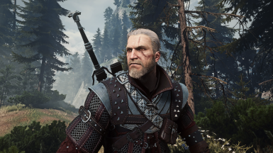 The Witcher 3 Wild Hunt Screenshot Number 11