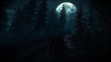 Night Skellige