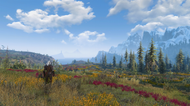Skellige Such A Beautiful Place