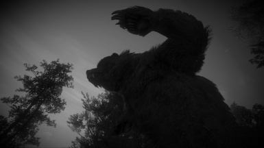 The Witcher 3 4K Bear Black And White Filter