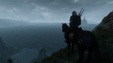 Witcher on the path