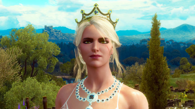 There is not one portrait of Ciri