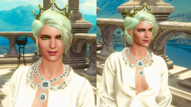 Alternative Outfit and Appearance for Ciri from Karpfenfrosch