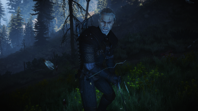 Witcher In Action