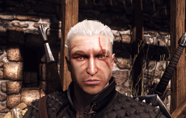 The Witcher One Geralt