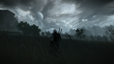 Taking a Stroll in a Field During a Storm