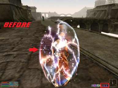 Shield Spell Visual Effects Remover