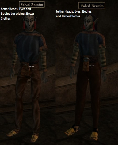 Falvel Arenim clothes with and without mod