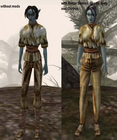 dark elf female clothes with and without Better mods series