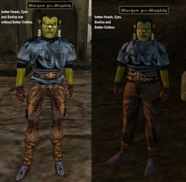 Shargam gro-Shagdulg clothes with and without mod