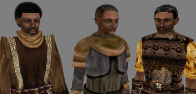 Hair Pack for Redguards Redone at Morrowind Nexus - mods and community