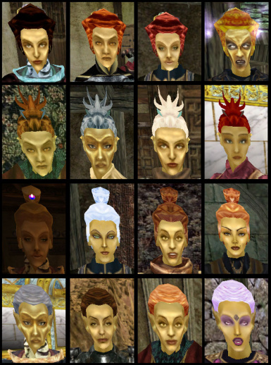 Distinct Hair Retextured Altmer Hair Up Styles
