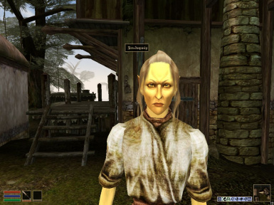 Galleo_RBMcK_HE_v1.0 and v1.1 Head MacKom's with hair on the bodies of Robert. Altmer