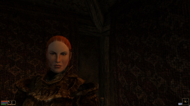 Hair Replacer for Nords and Bosmers Redone
