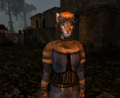 Khajiit hair unlocker