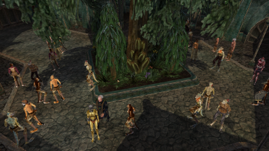Morrowind Conglomeration
