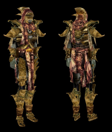 Redoran War Armor and Sathil Mercenary Equipment