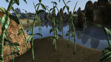 Smoothed Marshmerrow for Graphic Herbalism - MWSE and OpenMW Edition
