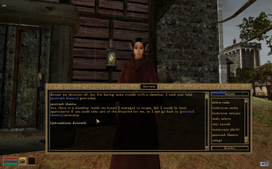 Yet Another Morrowind Plugin Translator