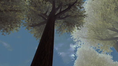 Mallorn's Dark Green alternate Tree Texture's