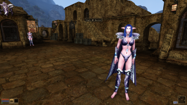 Night Elf Race for Better Bodies by Hyperion v1.08