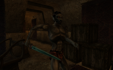 Chillrend for Morrowind