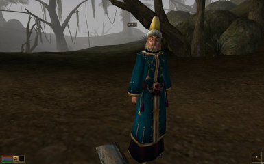 To Save a Falling Wizard at Morrowind Nexus - mods and community