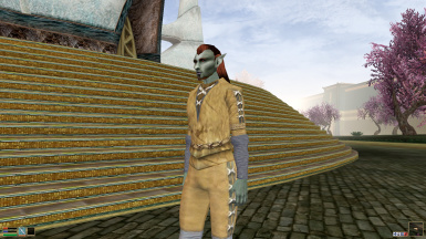 Articus Mournhold Clothes
