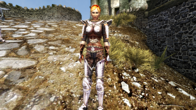 Please arrest me hot imperial guard. This mod together with many visual mods.