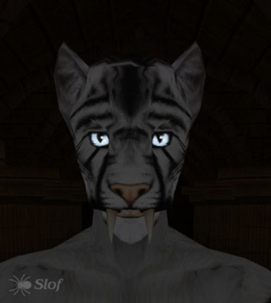 Slof's White Tiger