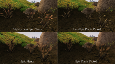 Epic Plants Versions Will be Available on Epic Plants Download Page