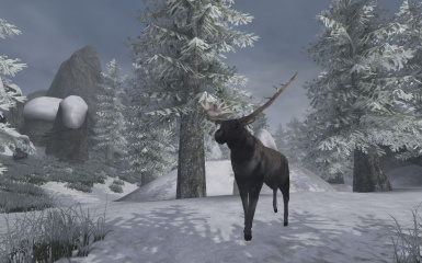 Anthology Solstheim Tomb of the Snow Prince Unofficial Patch Pack