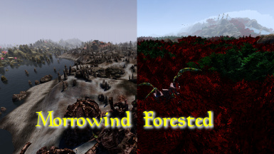 Morrowind Forested