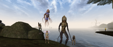 Vvardenfell Were Collection
