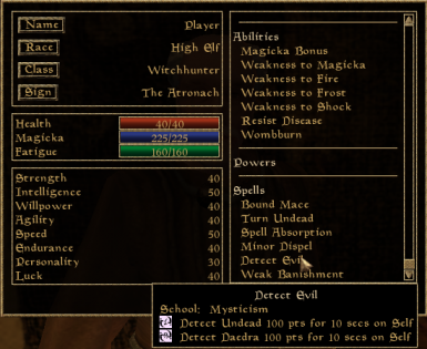Witchhunters' spells allow them to effectively find and fight undead, daedra and evil sorcerers.
