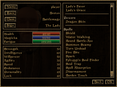 Battlemages, are less universal, their spells are mostly focused on combat applications.