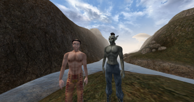 Comparison of human and elven body shape