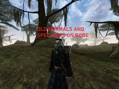 Old Robe Normal