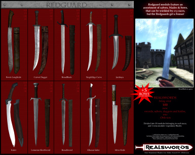 RealSwords  Redguard