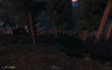 ElderCouncil-Everglade 2 Unpatched