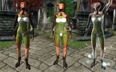 Compilation shot of new normalmaps for Bius Adventuress Body Bab