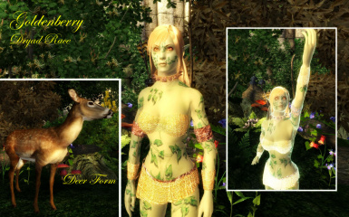 Luchaires Dryad Race