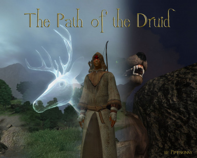 Druid Mod - Old Version