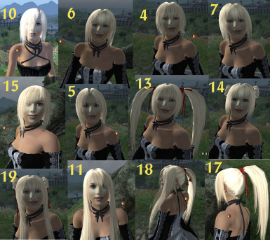 Ren Hair for Vilja 1 - optional file