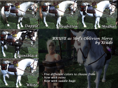 Xtudos alternate Bruses using Slofs horses