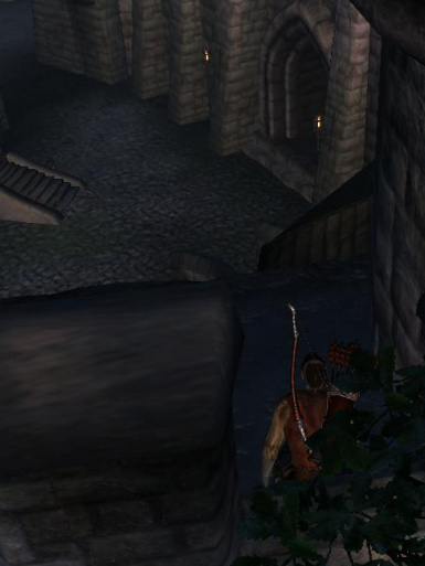 TIE - Tamriel Immersion Experience