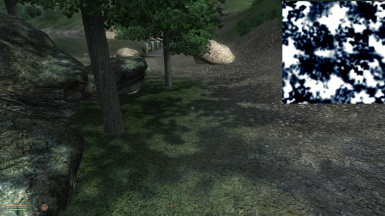 New shadows for trees